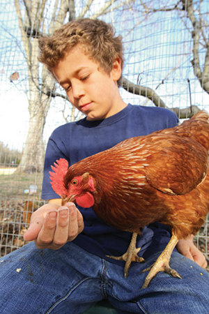 Zach with a chicken on his lap that's eating out of his hand - Tractor Supply Co.