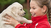 How to Select and Train the Right Dog For Your Family