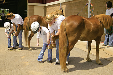 special needs children grooming their horses with adult help