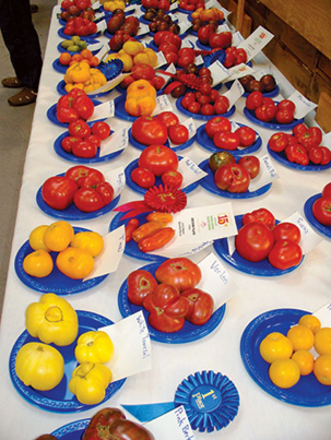 various vegetables displayed on a table after the judging is complete