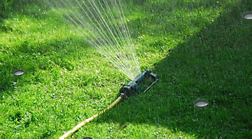 Lawn sprinkler with cans placed on the lawn to measure the water