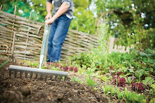 How To Create A No Till Garden