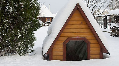 Winter Dog Kennel