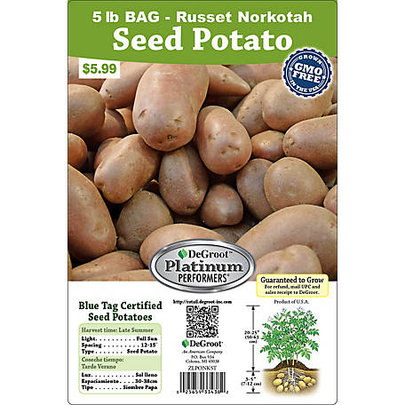 DeGroot Seed Potato Norkotah Russet, 5 lb.
