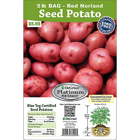 DeGroot Seed Potato Norland, 5 lb.