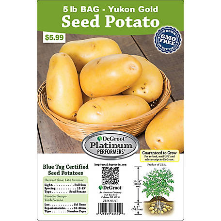 DeGroot Seed Potato Yukon Gold, 5 lb.