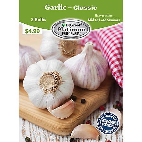 DeGroot Garlic, 3 Cloves