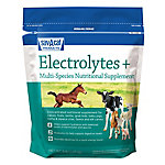 Sav-A-Caf Electrolytes Plus Multi-Species Supplement, 6 lb. Pouch