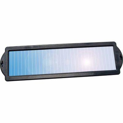 Buy Coleman 1 Watt Solar Battery Maintainer Online