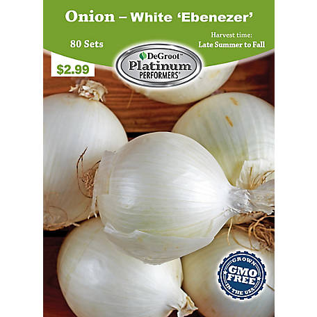 DeGroot Onion White Ebenezer, 80 Sets