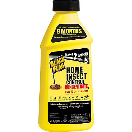 Black Flag Home Insect Control Concentrate, 16 oz., HG-11011