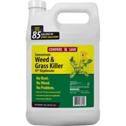 Shop Compare-N-Save Grass & Weed Killer Concentrates, 41% Glyphosate at Tractor Supply Co.