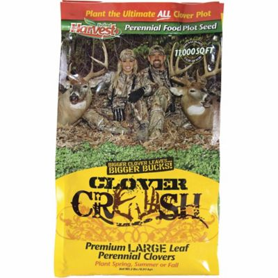 Evolved Harvest Clover Crush