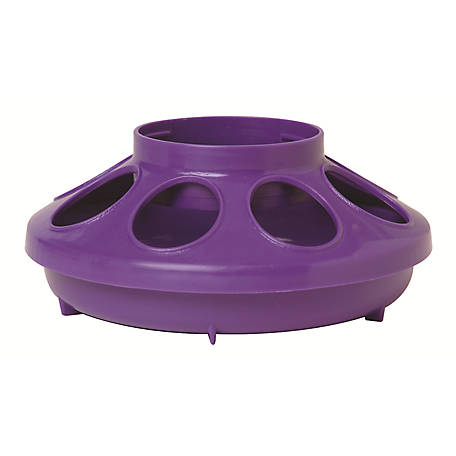 Little Giant 1-Quart Plastic Feeder Base, Purple
