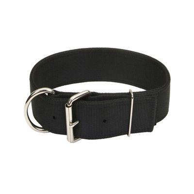 Black Frida fabric dog collar