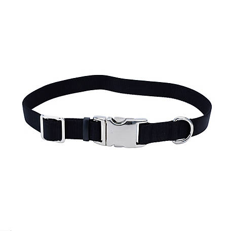 Retriever Adjustable Dog Collar with Metal Buckle