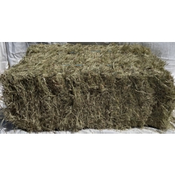 Shop Hay Bales at Tractor Supply Co.