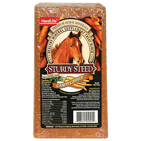 Evolved Habitats Herdlife Sturdy Steed Candy Carrot, 4 lb.