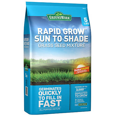 GroundWork Sun & Shade Grass Seed, South, 5 lb., 440AP0053UC-5