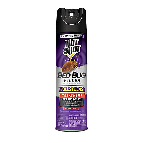 Black Flag Bed Bug Killer, Aerosol, 17.5 oz., HG-96440
