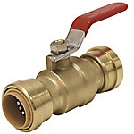 ProBite 3/4 in. Ball Valve