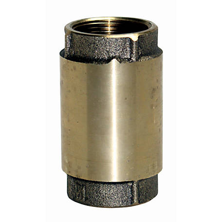Water Source Brass Check Valve, 1-1/4 in.