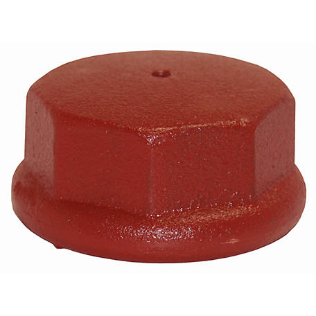 Water Source Well Point Drive Cap, 2 in.