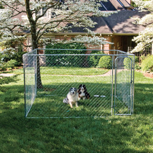 Petsafe Do It Yourself Dog Kennel 10 Ft W X 10 Ft L X 6