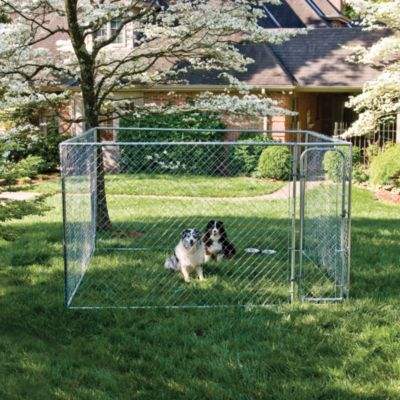 Dog at tractor supply co petsafe do it yourself dog kennel 10 ft w x 10 ft solutioingenieria