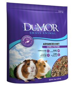 Shop DuMOR Guinea Pig Premium Diet 4 lb. at Tractor Supply Co.