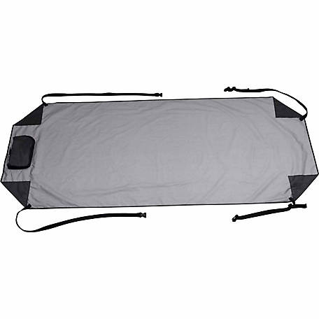 Classic Accessories Auto Windshield Cover, 67 in. x 28 in. x 1/5 in.