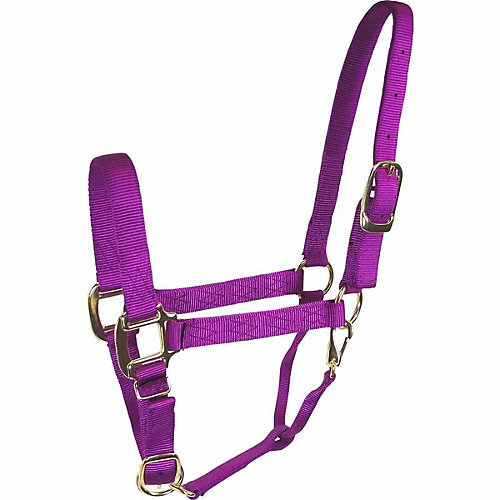 Halters & Leads - Tractor Supply Co.