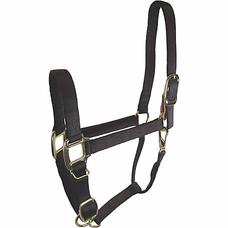 DuMOR Chicago Screw-Style Breakaway Halter with Leather at Buckle