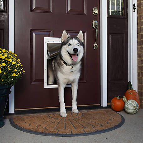 Petsafe Extreme Weather Pet Door At Tractor Supply Co