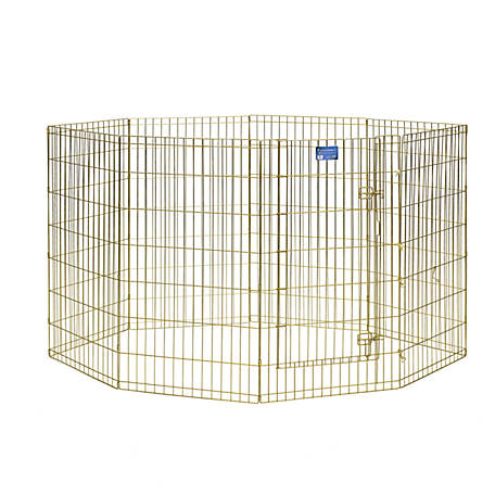 MidWest Homes for Pets MidWest Gold Exercise Pen, 42 in. H