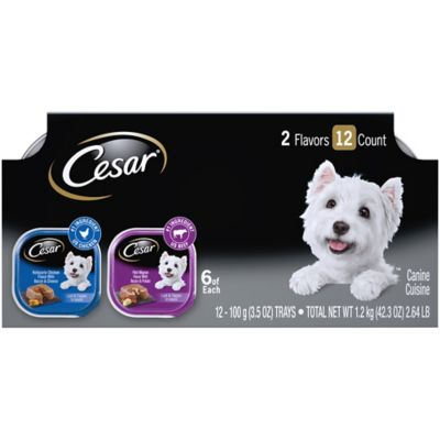 Cesar Savory Delights Variety Pack Rotisserie Chicken & Filet Mignon Dog Food; Pack of 12