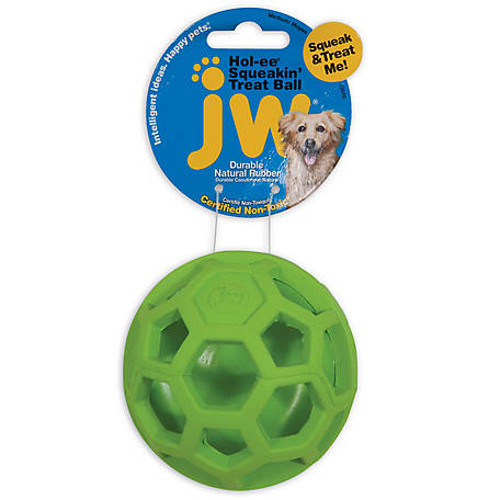 JW Pet Treat N Squeak Dog Toy