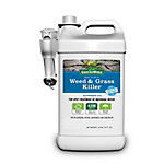 GroundWork Weed & Grass Killer, Ready To Use Spray, 2% Glyphosate, 1.33 gal.