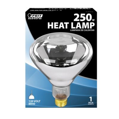 Buy Feit Electric 250 watt Incandescent R40 Clear Heat Lamp Reflector Online