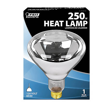 Feit Electric 250 watt Incandescent R40 Clear Heat Lamp Reflector, 250R40/1