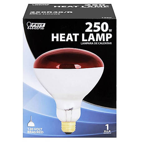 Feit Electric 250 watt Incandescent R40 Red Heat Lamp Reflector, 250R40/R
