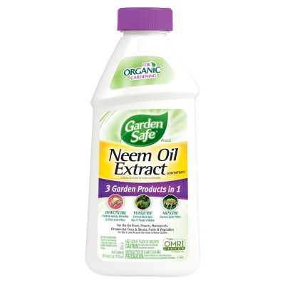 Garden Safe 3 In 1 Neem Oil Extract Concentrate Organic 16 Oz At