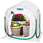 FlowerHouse PlantHouse 2, 2 ft. x 2 ft. x 2-1/2 ft.