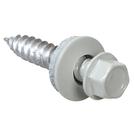 Hillman 10 x 1-1/2 in. White Self-Piercing Sheeter Screw, 1 lb.
