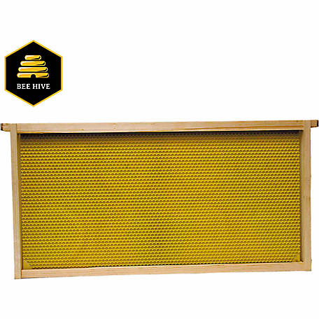 Harvest Lane Honey Beehive Deep Brood Wooden Frame with Plastic Foundation, 1-3/8 in. x 19 in. x 9-1/8 in.