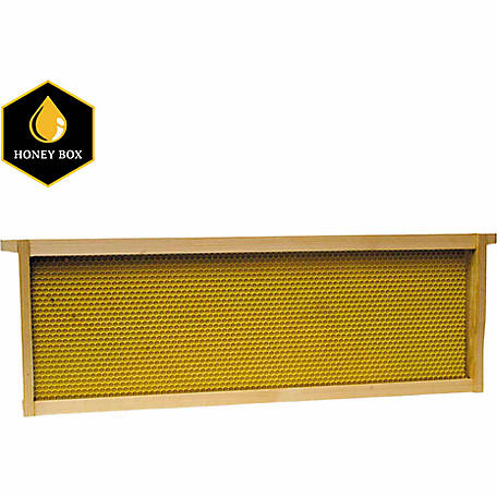 Harvest Lane Honey Beehive Medium Honey Super Wooden Frame with Plastic Foundation, 1-3/8 in. x 19 in. x 6-1/2 in.
