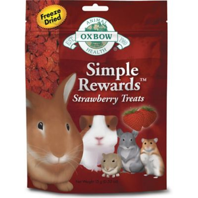 Oxbow Animal Health Simple Rewards Strawberry Treat