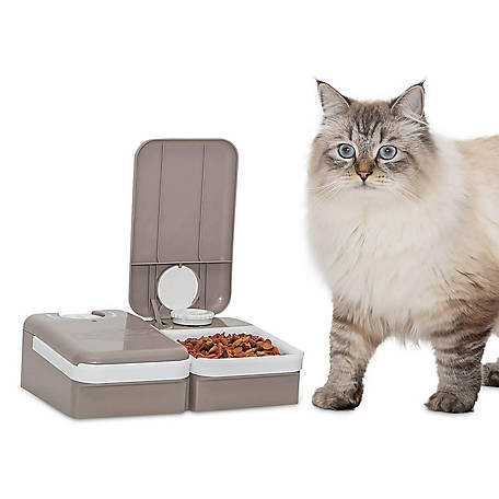 PetSafe 2-Meal Automatic Dog and Cat Feeder, Dispenses Dog Food or Cat Food