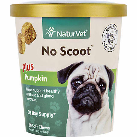 NaturVet No Scoot Plus Pumpkin Soft Chew for Dogs, 60 Count