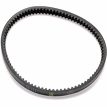 Masters of Motion CVT Belt